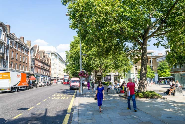 Chelsea Area Guide - Image 2